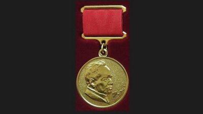 медаль Шолохова 4 попытка (2)